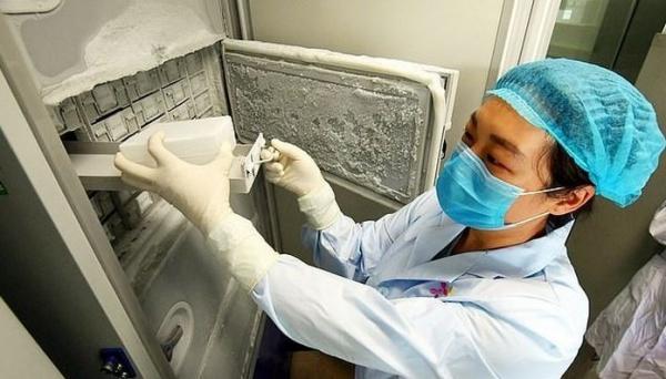 우한바이러스연구소 내 부실한 냉동시설이 오픈되면서 논란이 일기도 했다. [네이쳐]